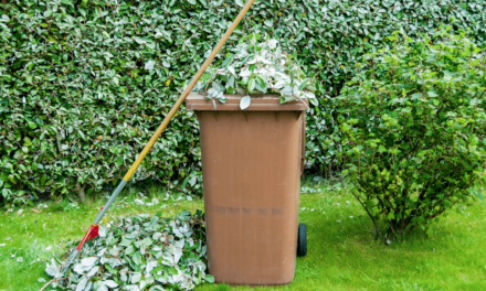 Charges for (Brown Bin) Garden Waste Collections