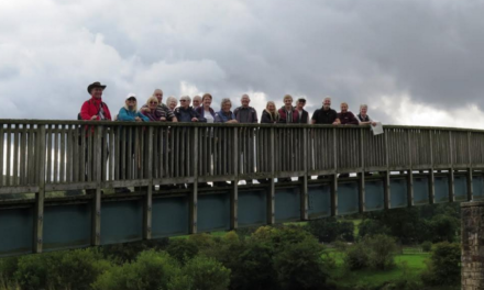 Join Heart of Teesdale for the final Trails through Teesdale Walk!