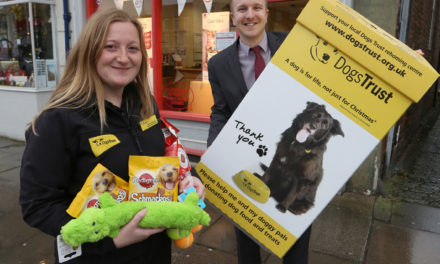 Help abandoned dogs with Darlington Building Society