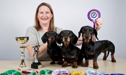 Fun dog show paws money into good causes