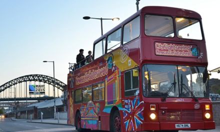 Hop on Board the City Tour and See the Sights