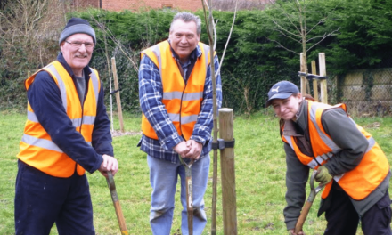 Tree-mendous Effort from Wallsend Parks Volunteers