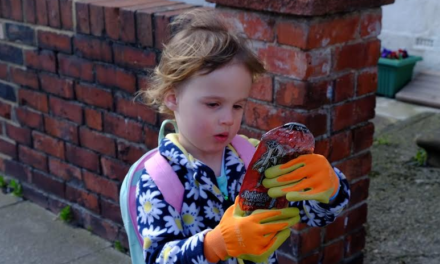 Three-year-old girl inspires huge clean up operation in North Tyneside
