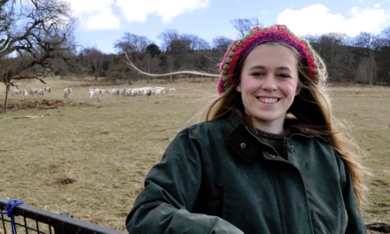 Behind the Scenes with The Chillingham Wild Cattle Chillingham Chainsaw Challenge and Hidden Trail Day