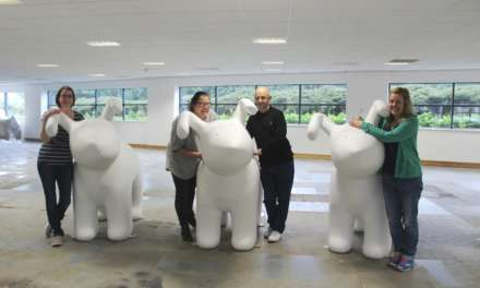 Different strokes for Snowdogs