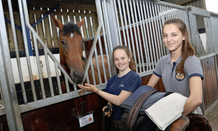 Work Experience Students Help Horse Racing Industry Tackle Staffing Crisis