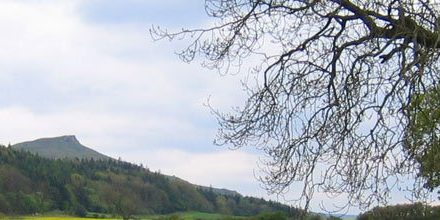 Outdoor performances head to Guisborough Forest & Walkway