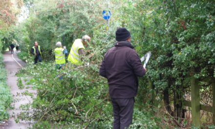 Northallerton and Villages Community Forum AGM and clean up a cycle route