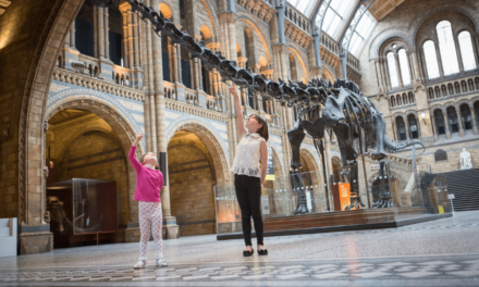 Dippy the Diplodocus is coming to Newcastle's Great North Museum: Hancock in 2019