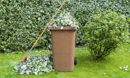 Online sign up for garden waste collections now open