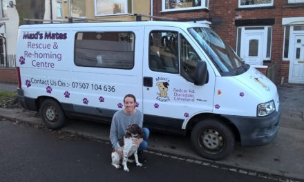 Probation donates van to local dog charity