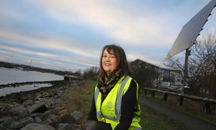 Green consultant puts down roots