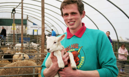 Live Lambing Comes to Hall Hill Farm in Durham on Friday 7 April