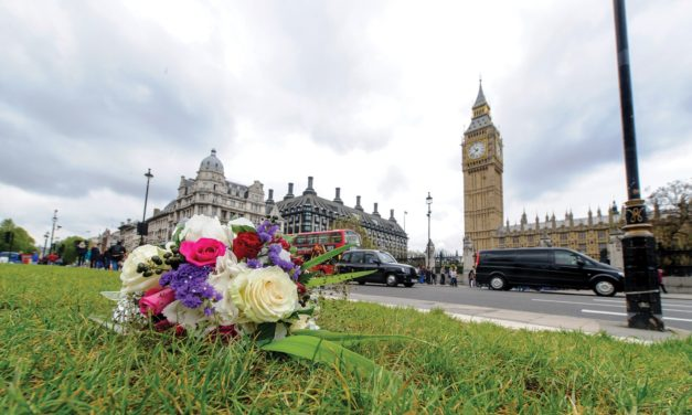 Lonely Bouquets set to cheer up the UK