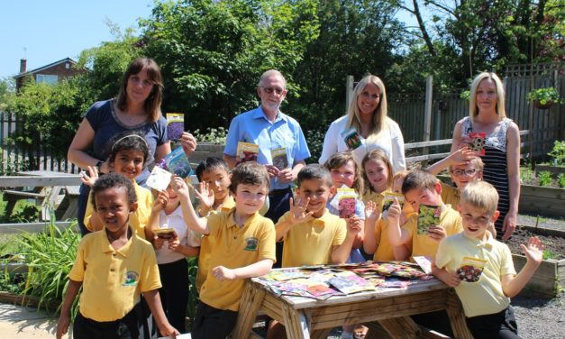 City set to bloom after garden centre donates seeds to schools