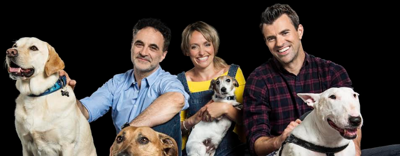 channel 4 heads to tyneside to find animals new homes