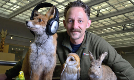 Museum 'discotheque' to explore the lost world of vinyl wildlife recordings