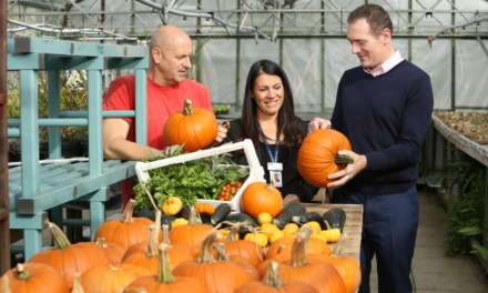 Fork in the Road launches scheme that will see prison-grown fruit and vegetables served to its customers