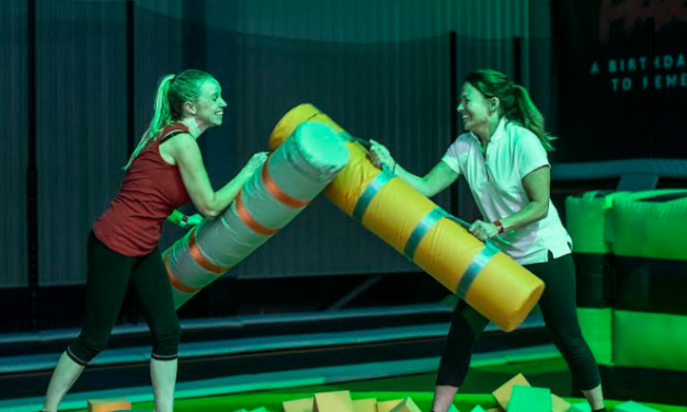Could you beat your Colleagues in the Geordie Ninja Challenge?