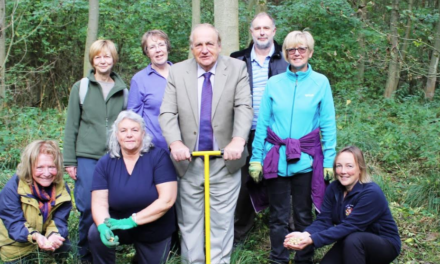 Bluebell wood planting underway at Rising Sun Country Park
