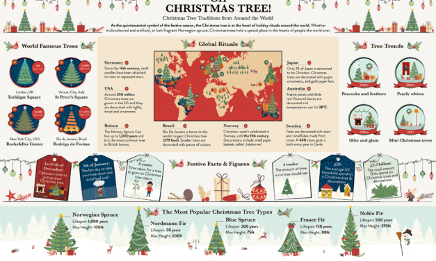 Do you know any of these fascinating Christmas tree facts?