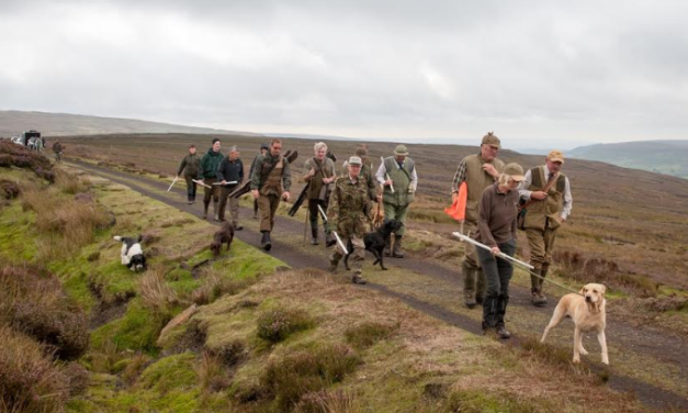 Grouse Shooting Season Heralded a Success for Local North Yorkshire Economy