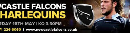 Falcons to Host Georgia in Pre-RWC Warm Up Match