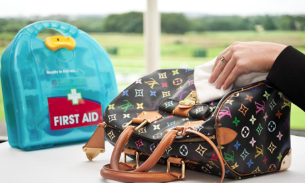 Handbag Clinic Races to the Rescue of Style Conscious Ladies