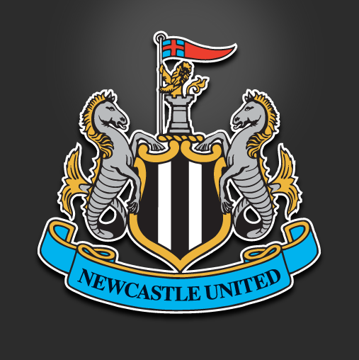 Newcastle United Appeal Coloccini Red Card