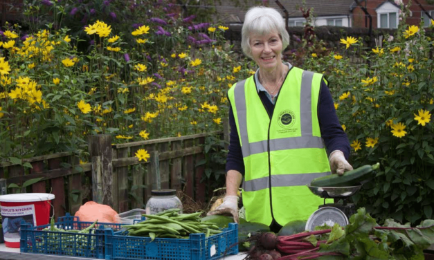 Harvesting Food and Volunteers for The People's Kitchen
