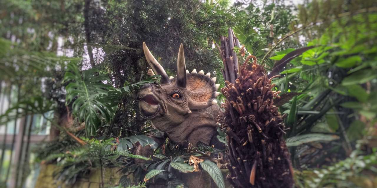 Calling all Mad Hatters and Dino discoverers