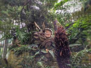 A Triceratops sneaking a peek at the Sunderland Museum & Winter Gardens