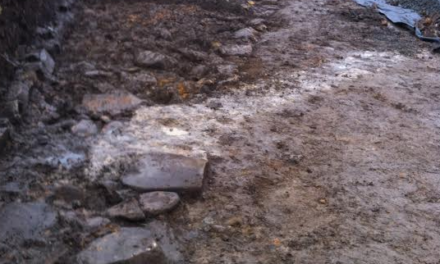 New archaeological discovery at Housesteads