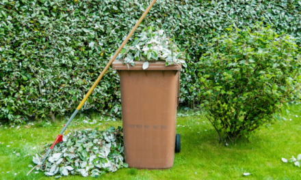 Last chance for all Garden Waste Collections in 2016