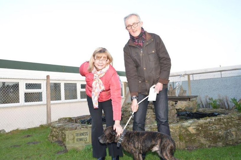 Durham Dog Rescue Centre Gets Banks Group Backing