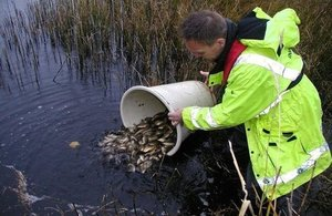 Almost 2 million fish released into England's rivers