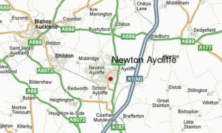 Essential work to Newton Aycliffe trees
