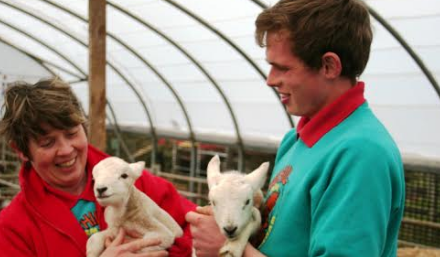 Lambing Live returns to the North East at Hall Hill Farm