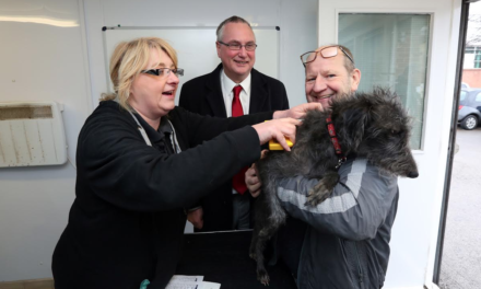 Free Dog Microchipping in Stockon Borough