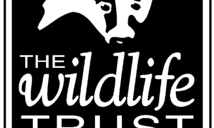 30 Days Wild coming soon – free Taster course