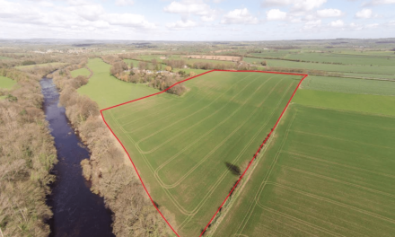 Prime Parcels of Land Offer Great Opportunity in County Durham
