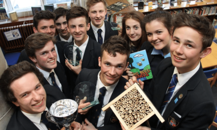 Team wins NY round of Young Enterprise with Bee Hotel business