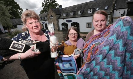 Creative start-up programme to support Dales businesses