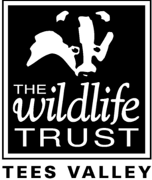 Wildlife staff jumping for joy at TV ad