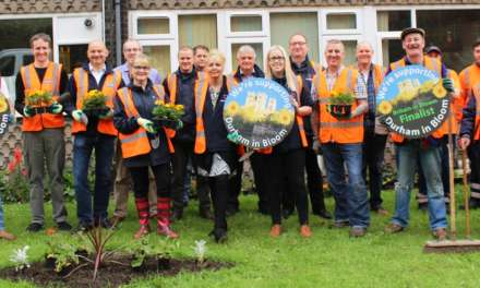 Estate 'blooms' with community planting scheme
