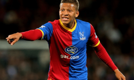 Newcastle United Sign Dwight Gayle