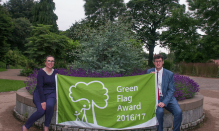 Raising the Green Flag Again