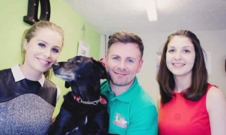New Doggy Day Camp and Grooming Parlour sets tails wagging after securing  £14,000 microloan