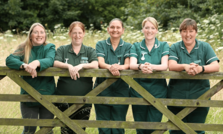 Leading North Yorkshire Veterinary Practices Agree Merger