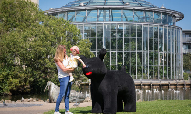 Head north, for Snowdogs and an overnight stay at Sunderland